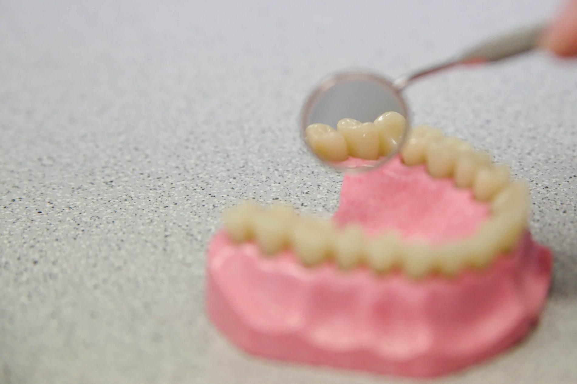 Zubní hygiena Eustoma